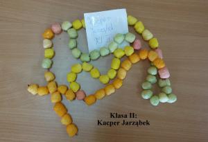 kl. II Kacper Jarząbek